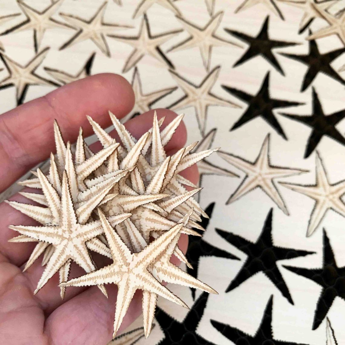 Wooden Starfish made by PaperStudio